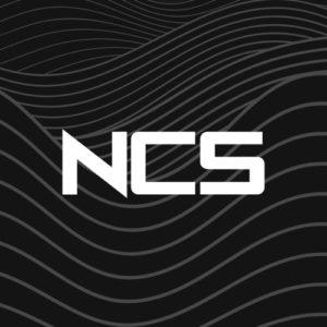 NCS アイコン