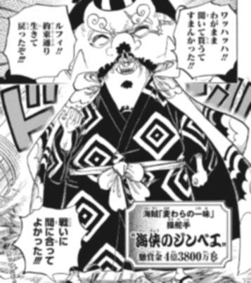 ワンピース97巻 ネタバレ